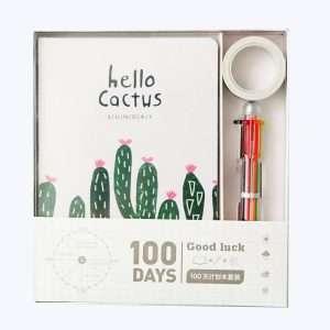 "Ежедневник ""100 days. Hello cactus""+скотч+ручка (2)"