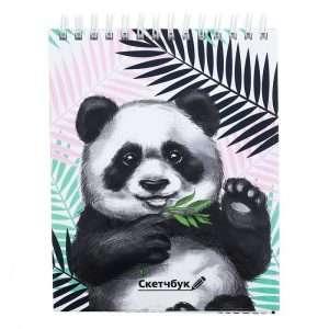 """Скетчбук на гребне """"Панда"""", А6"""