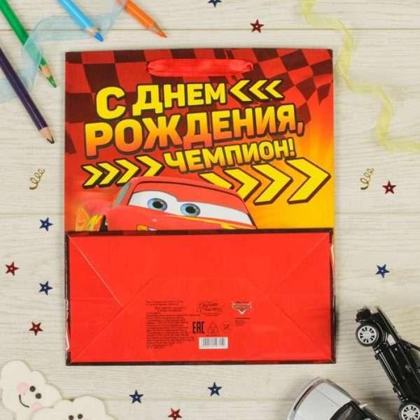 """Пакет """"С Днем рождения, чемпион!"""", 18х23х10 см"""