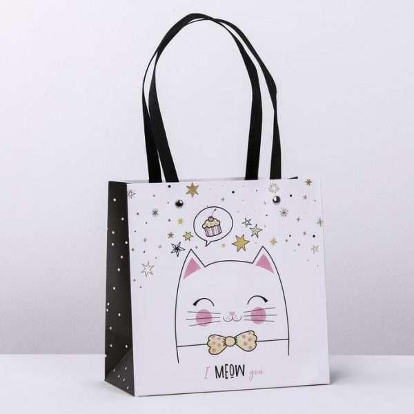 Пакет подарочный «Котик», 20×20×10 см